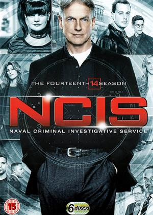 Rent NCIS: Series 14 Online DVD Rental