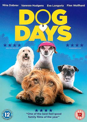 Rent Dog Days Online DVD & Blu-ray Rental