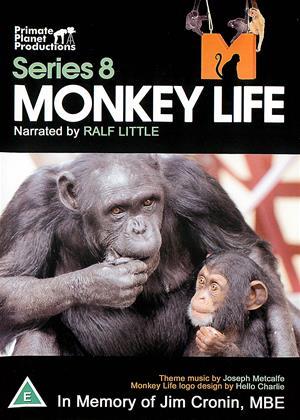 Rent Monkey Life: Series 8 Online DVD & Blu-ray Rental