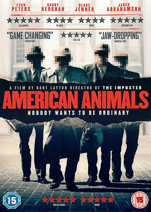 American Animals Online DVD Rental