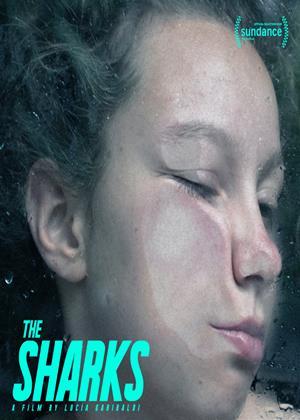 Rent The Sharks (aka Los Tiburones) Online DVD & Blu-ray Rental