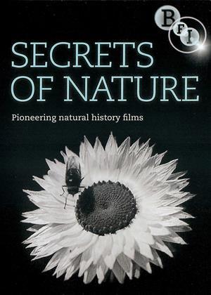 Rent Secrets of Nature Online DVD & Blu-ray Rental