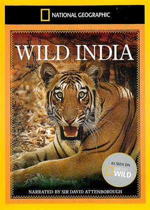 Rent National Geographic: Wild India (aka Secrets of Wild India) Online DVD & Blu-ray Rental
