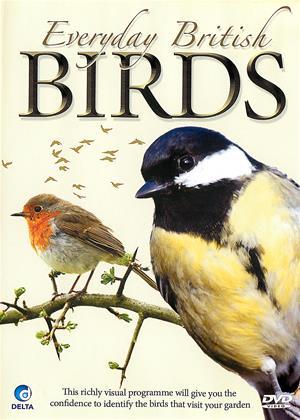 Rent Everyday British Birds (aka Everyday British Birds Identify Birds in your Garden) Online DVD & Blu-ray Rental