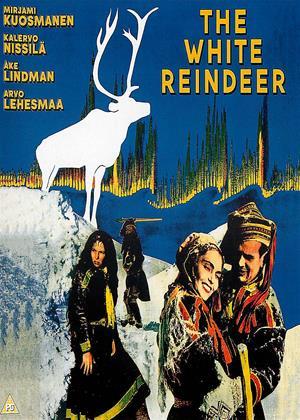 Rent The White Reindeer (aka Valkoinen Peura) Online DVD & Blu-ray Rental