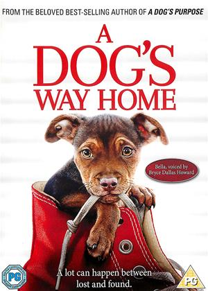 Rent A Dog's Way Home Online DVD & Blu-ray Rental