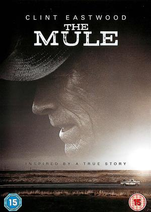 The Mule Online DVD Rental