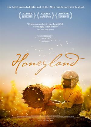 Rent Honeyland Online DVD & Blu-ray Rental