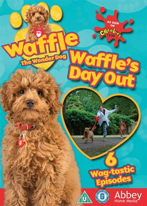 Rent Waffle the Wonder Dog: Waffle's Day Out Online DVD & Blu-ray Rental