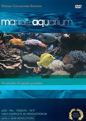 Rent Marine Aquarium Online DVD & Blu-ray Rental