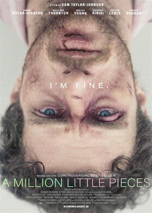 Rent A Million Little Pieces Online DVD & Blu-ray Rental