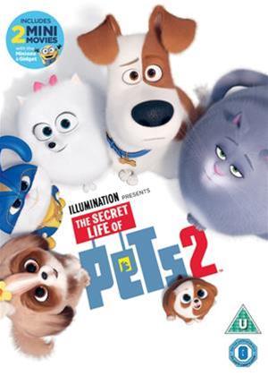Rent The Secret Life of Pets 2 Online DVD & Blu-ray Rental