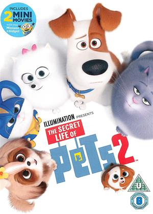 Rent The Secret Life of Pets 2 Online DVD & Blu-ray Rental