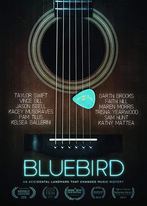 Rent Bluebird (aka Bluebird: An Accidental Landmark That Changed History) Online DVD & Blu-ray Rental