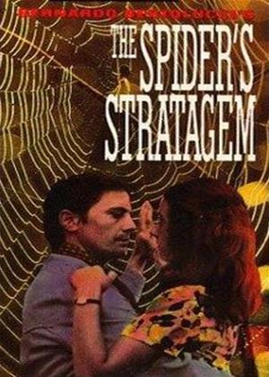 Rent The Spider's Stratagem (aka Strategia del Ragno) Online DVD & Blu-ray Rental