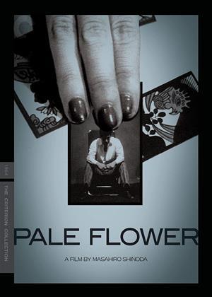 Rent Pale Flower (aka Kawaita hana) Online DVD & Blu-ray Rental
