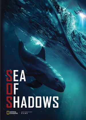 Rent Sea of Shadows Online DVD & Blu-ray Rental