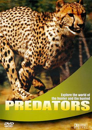 Rent Wildlife: Predators Online DVD & Blu-ray Rental