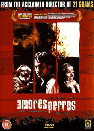Rent Amores Perros (aka Love's a Bitch / Love Dogs) Online DVD & Blu-ray Rental