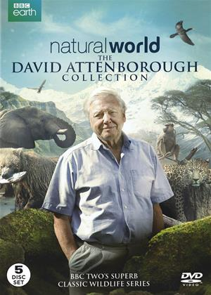 Rent Natural World: The David Attenborough Collection Online DVD & Blu-ray Rental