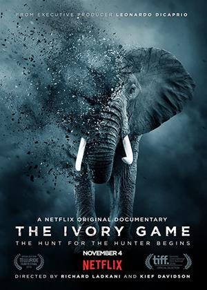 Rent The Ivory Game Online DVD & Blu-ray Rental