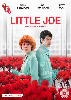 Rent Little Joe Online DVD & Blu-ray Rental