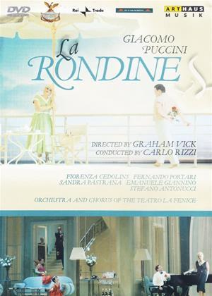 Rent Puccini: La Rondine (Carlo Rizzi) Online DVD & Blu-ray Rental