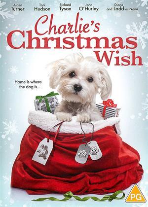 Rent Charlie's Christmas Wish Online DVD & Blu-ray Rental