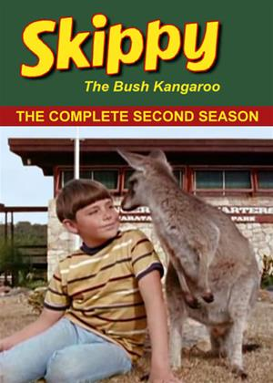 Rent Skippy the Bush Kangaroo: Series 2 Online DVD & Blu-ray Rental
