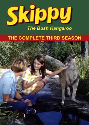 Rent Skippy the Bush Kangaroo: Series 3 Online DVD & Blu-ray Rental