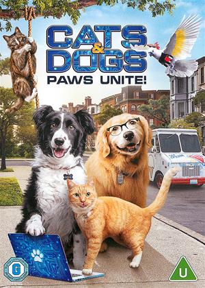 Rent Cats and Dogs: Paws Unite! (aka Cats and Dogs 3: Paws Unite!) Online DVD & Blu-ray Rental