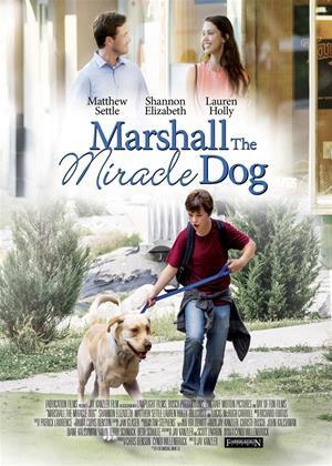 Rent Marshall the Miracle Dog (aka Marshall's Miracle) Online DVD & Blu-ray Rental