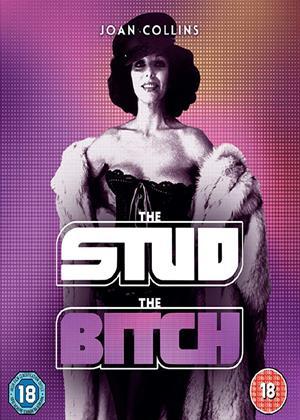Rent The Stud / The Bitch (aka Jackie Collins' The Stud / Lady Diamond) Online DVD & Blu-ray Rental